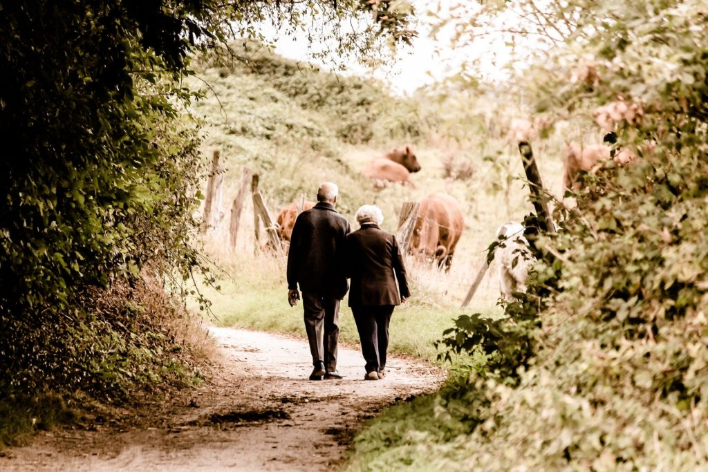 An elderly couple walk down a country lane.